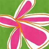 Jumbo Flower Power