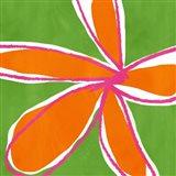 Jumbo Flower Power II