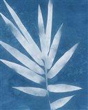 Spa Bamboo II