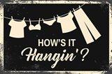 How's it Hangin'?