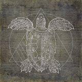 Turtle Geometric Silver