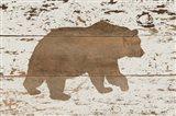 Bear in Reverse
