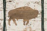 Buffalo in Reverse