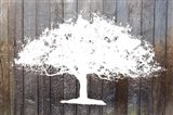 White Tree on Wood