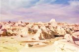 Bisti Badlands Desert Wonderland I