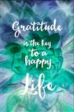 Gratitude is the Key