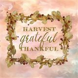 Harvest, Grateful, Thankful