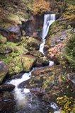 Black Forest Upper Falls