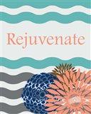 Rejuvenate Waves