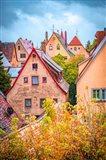 Fall Colors of Rothenburg II