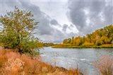 Snake River Autumn I