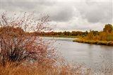 Snake River Autumn II