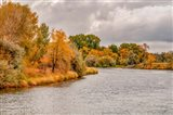 Snake River Autumn III