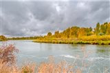 Snake River Autumn VI