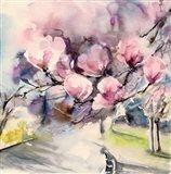 Blossom Blvd.