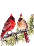 Cardinals III