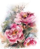 Pink Peonies II