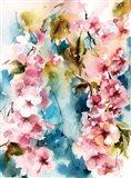 Blushing Blossoms