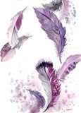 Purple Feathers IV