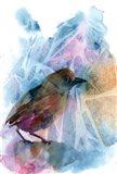 Bird Abstract I