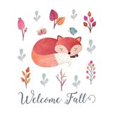 Welcome Fall Fox