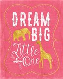 Dream Big - Pink