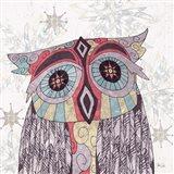 Boho Owl & Feathers