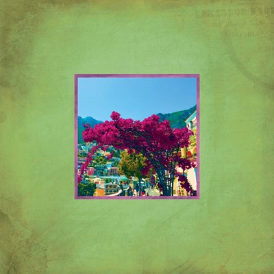 Positano Profusion II Poster by Tammy Apple for $48.75 CAD