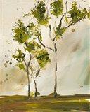 Calli Trees I