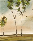 Calli Trees II