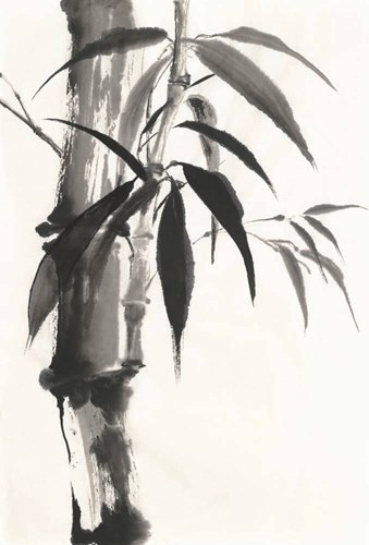 Sumi Bamboo Poster by Chris Paschke for $43.75 CAD