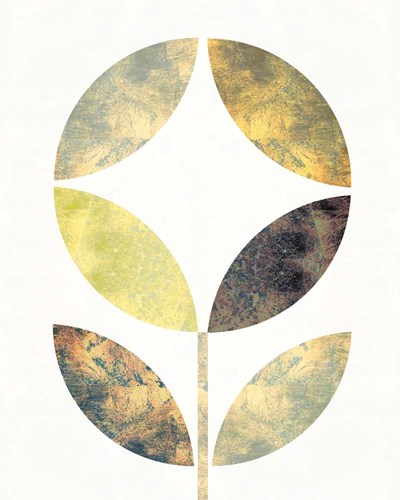 Golden Flower II Poster by Michael Mullan for $57.50 CAD