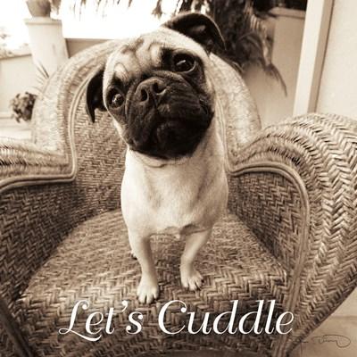 Wonder Lets Cuddle Sq Script 1 Poster by Jim Dratfield for $35.00 CAD