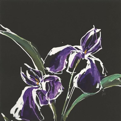Iris on Black I Poster by Chris Paschke for $57.50 CAD