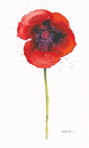 Splash I Poster by Shirley Novak for $47.50 CAD