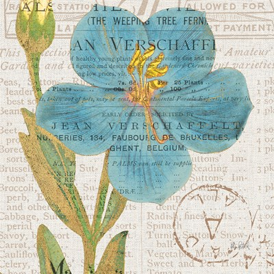 Bookshelf Botanical VI Poster by Katie Pertiet for $50.00 CAD