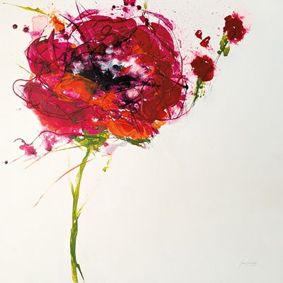 Poppy Master on White Poster by Jan Griggs for $53.75 CAD