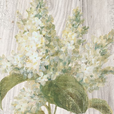 Scented Cottage Florals II Crop Poster by Danhui Nai for $35.00 CAD
