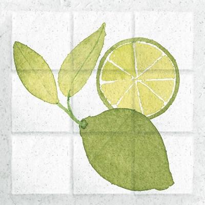 Citrus Tile VII Poster by Elyse DeNeige for $57.50 CAD