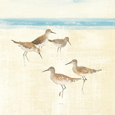 Sandpipers Square I Blue Poster by Avery Tillmon for $57.50 CAD