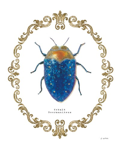 Adorning Coleoptera V Poster by James Wiens for $57.50 CAD