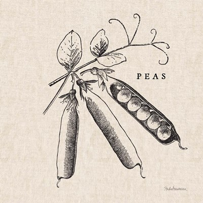 Burlap Vegetable BW Sketch Peas Poster by STUDIO MOUSSEAU for $42.50 CAD