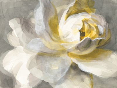 Abstract Rose Poster by Danhui Nai for $42.50 CAD