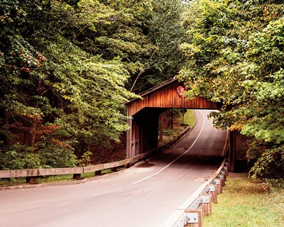 Covered Bridge Poster by Brookview Studio for $57.50 CAD