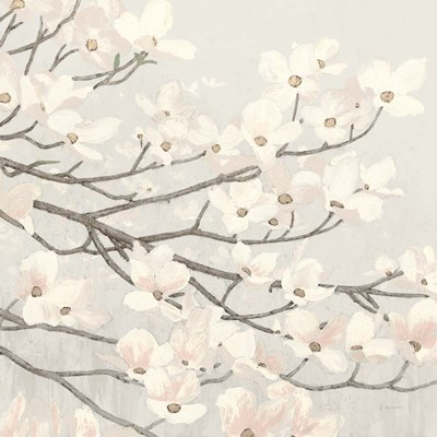 Dogwood Blossoms II Gray Poster by James Wiens for $57.50 CAD