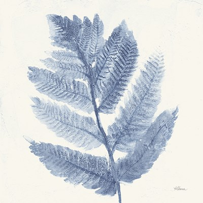 Forest Ferns I Blue Poster by Albena Hristova for $50.00 CAD