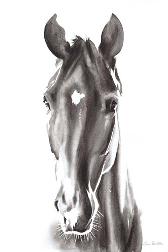 Le Cheval Noir Poster by Aimee Del Valle for $45.00 CAD