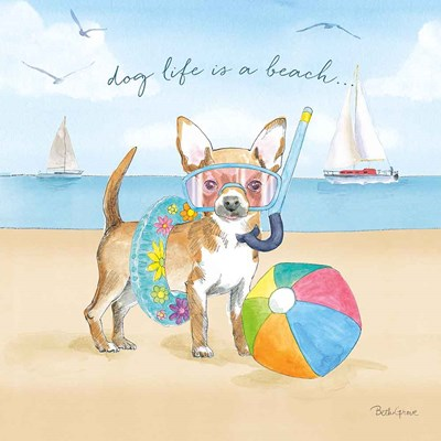 Summer Paws II Poster by Beth Grove for $65.00 CAD