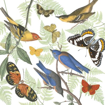 Natures Flight I Poster by Wild Apple Portfolio for $65.00 CAD