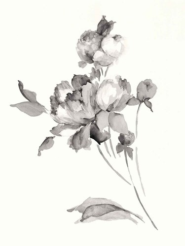 Peony Blossoms Gray Poster by Wild Apple Portfolio for $97.50 CAD